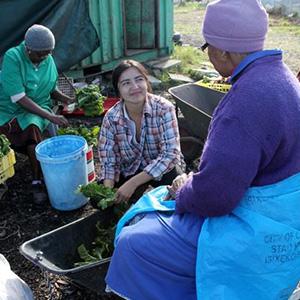 Abalimi Vegetable Project, Guguletu